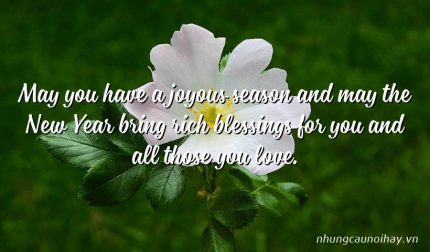 May you have a joyous season and may the New Year bring rich blessings for you and all those you love.