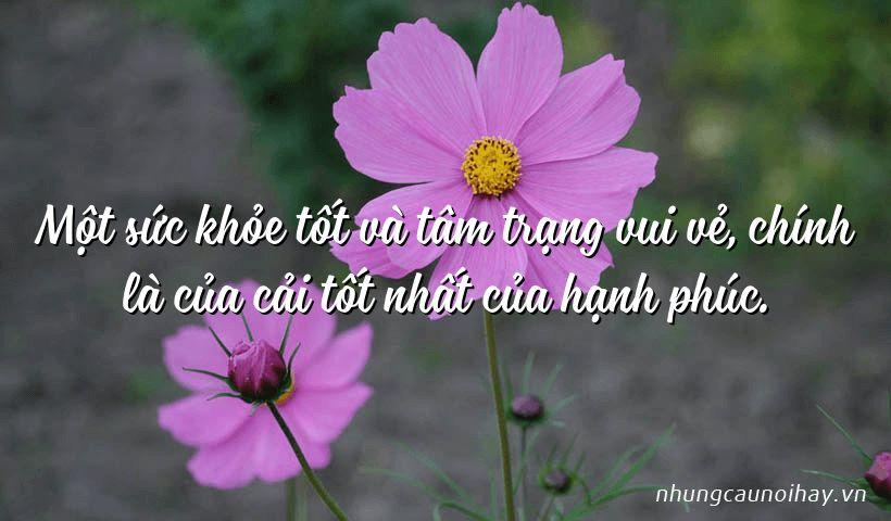Một sức khỏe tốt và tâm trạng vui vẻ, chính là của cải tốt nhất của hạnh phúc.
