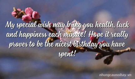 My special wish may bring you health, luck and happiness each minute! Hope it really proves to be the nicest birthday you have spent!