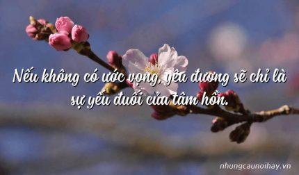 Nếu không có ước vọng, yêu đương sẽ chỉ là sự yếu đuối của tâm hồn.