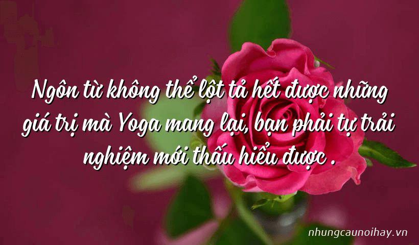 Ngôn từ không thể lột tả hết được những giá trị mà Yoga mang lại, bạn phải tự trải nghiệm mới thấu hiểu được .