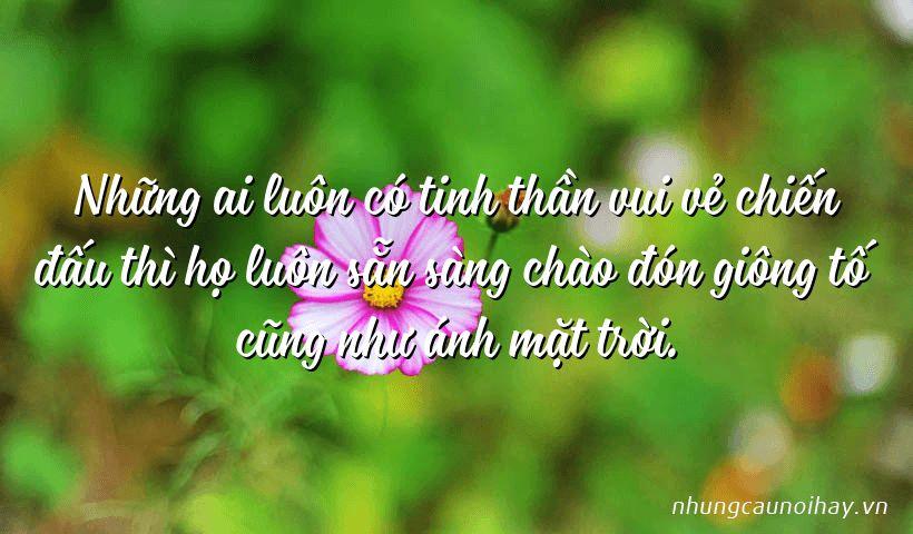 Những ai luôn có tinh thần vui vẻ chiến đấu thì họ luôn sẵn sàng chào đón giông tố cũng như ánh mặt trời.