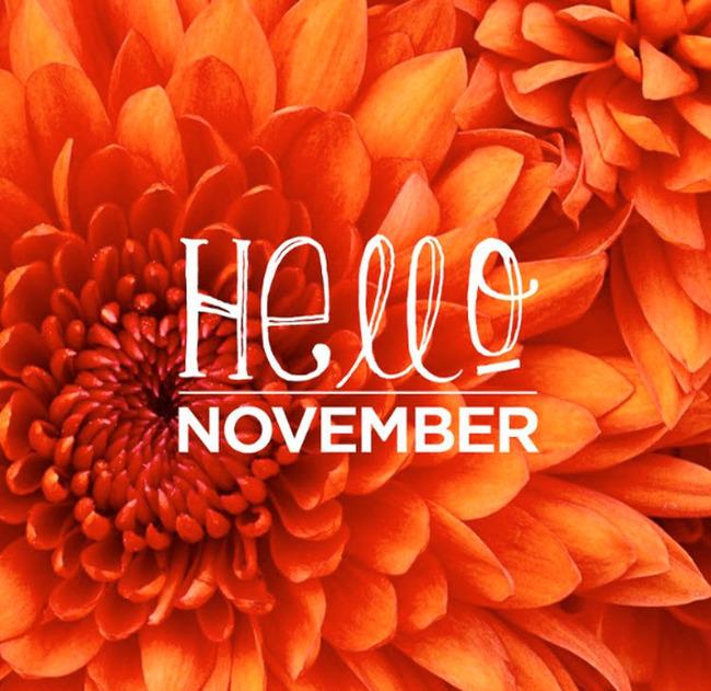 hình ảnh chào tháng 11 đẹp để làm stt