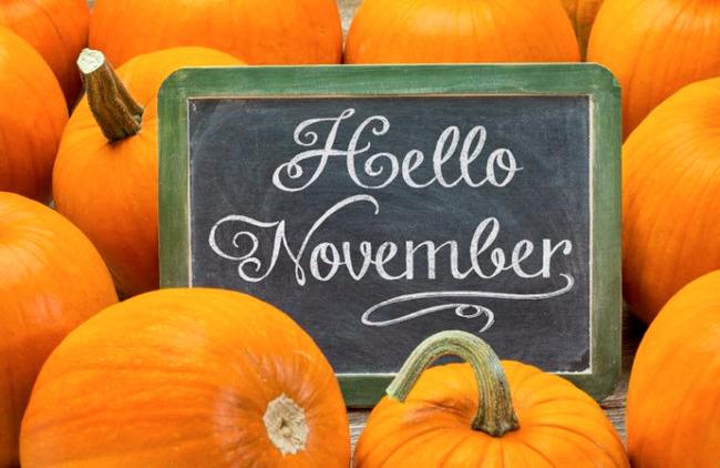 Chào tháng 11, tháng của cơn gió đông rì rào