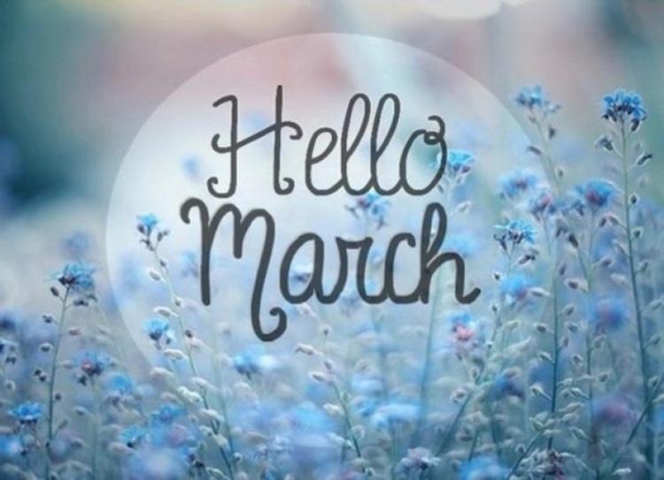 stt chào tháng 3, stt hay về tháng 3, stt tháng 3, stt tháng 3 về vẫy chào bình an, stt tháng 3 đã về