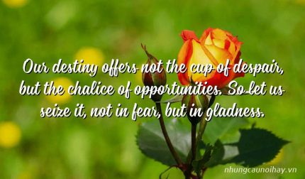 Our destiny offers not the cup of despair, but the chalice of opportunities. So let us seize it, not in fear, but in gladness.