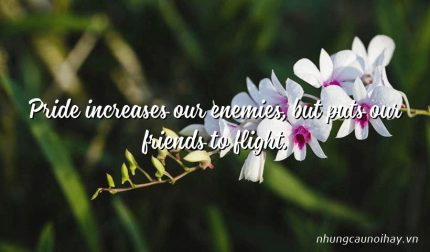 Pride increases our enemies, but puts our friends to flight.