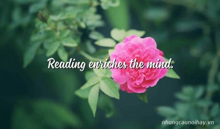Reading enriches the mind.