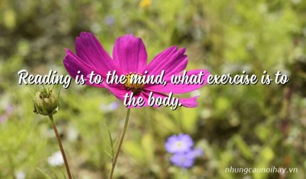 Reading is to the mind, what exercise is to the body.