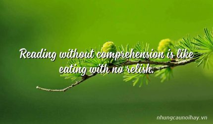 Reading without comprehension is like eating with no relish.