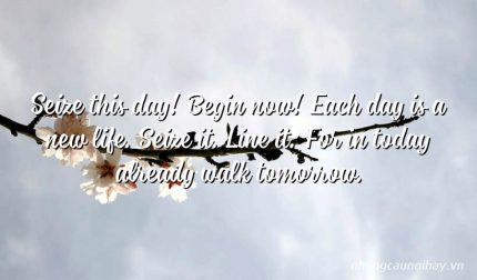 Seize this day! Begin now! Each day is a new life. Seize it. Line it. For in today already walk tomorrow.