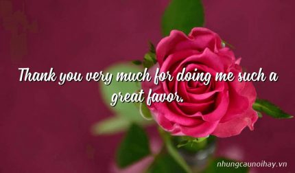Thank you very much for doing me such a great favor.