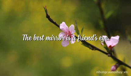 The best mirror is a friend's eye.
