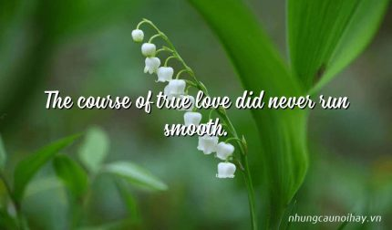 The course of true love did never run smooth.