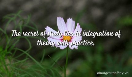 The secret of study lies in integration of theory with practice.