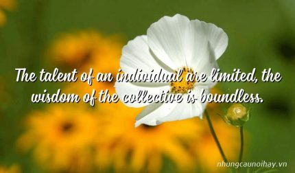 The talent of an individual are limited, the wisdom of the collective is boundless.