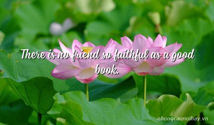There is no friend so faithful as a good book.