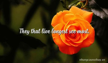 They that live longest see most.