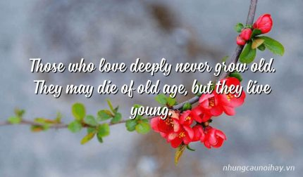 Those who love deeply never grow old. They may die of old age, but they live young.