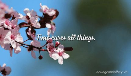 Time cures all things.