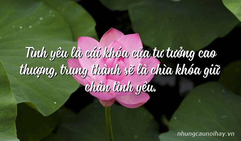 Tình yêu là cái khóa của tư tưởng cao thượng, trung thành sẽ là chìa khóa giữ chân tình yêu.