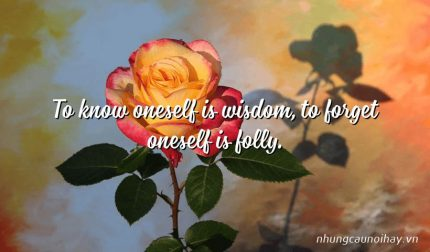 To know oneself is wisdom, to forget oneself is folly.