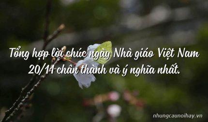 Tổng hợp lời chúc ngày Nhà giáo Việt Nam 20/11 chân thành và ý nghĩa nhất.