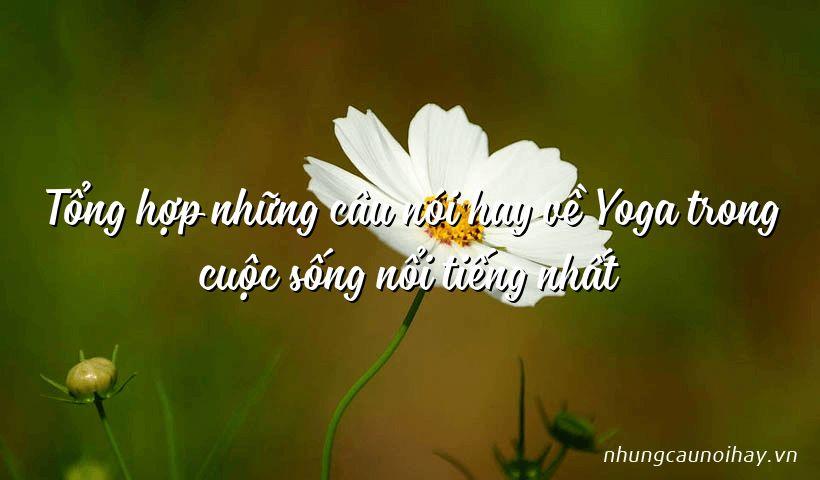 Tổng hợp những câu nói hay về Yoga trong cuộc sống nổi tiếng nhất
