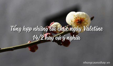 Tổng hợp những lời chúc ngày Valetine 14/2 hay và ý nghĩa