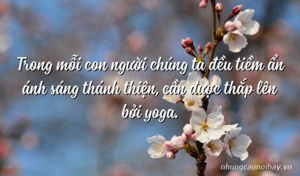 Trong mỗi con người chúng ta đều tiềm ẩn ánh sáng thánh thiện, cần được thắp lên bởi yoga.