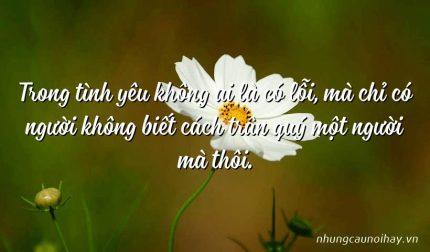 Trong tình yêu không ai là có lỗi, mà chỉ có người không biết cách trân quý một người mà thôi.