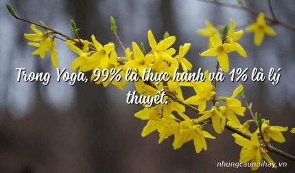 Trong Yoga, 99% là thực hành và 1% là lý thuyết.