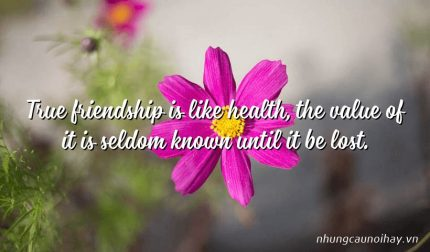 True friendship is like health, the value of it is seldom known until it be lost.