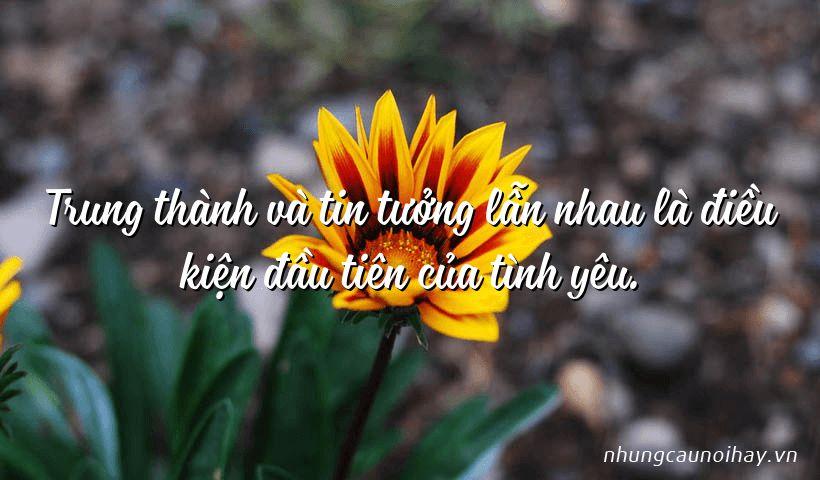 trung thanh va tin tuong lan nhau la dieu kien dau tien cua tinh yeu - Tổng hợp những câu nói hay về tình yêu hạnh phúc nổi tiếng nhất