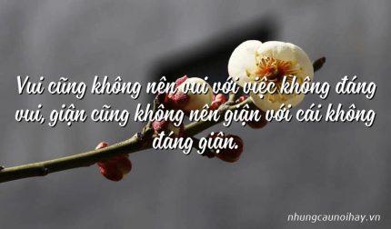 Vui cũng không nên vui với việc không đáng vui, giận cũng không nên giận với cái không đáng giận.
