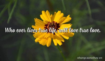 Who ever lives true life, will love true love.