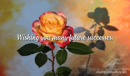 Wishing you many future successes.