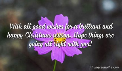 With all good wishes for a brilliant and happy Christmas season. Hope things are going all right with you!
