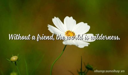 Without a friend, the world is wilderness.