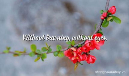 Without learning, without eyes.