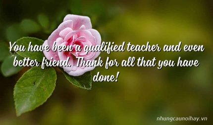 You have been a qualified teacher and even better friend. Thank for all that you have done!