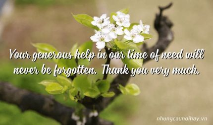 Your generous help in our time of need will never be forgotten. Thank you very much.