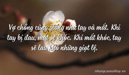 Vợ chồng cũng giống như tay và mắt. Khi tay bị đau, mắt sẽ khóc. Khi mắt khóc, tay sẽ lau khô những giọt lệ.
