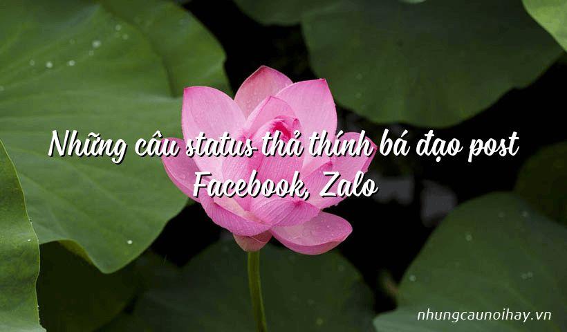 Những câu status thả thính bá đạo post Facebook, Zalo