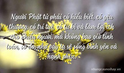 Người Phật tử phải có hiểu biết, có yêu thương, có trí tuệ, có từ bi và làm lợi ích cho nhiều người, mà không bao giờ tính toán, so đo, nhờ vậy ta sẽ sống bình yên và hạnh phúc.
