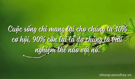 Cuộc sống chỉ mang lại cho chúng ta 10% cơ hội, 90% còn lại là do chúng ta trải nghiệm thế nào với nó.