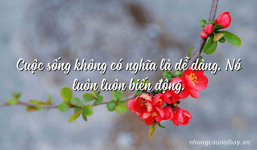 Cuộc sống không có nghĩa là dễ dàng. Nó luôn luôn biến động.