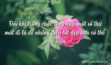 Đôi khi trong cuộc sống này, một số thứ mất đi là để những điều tốt đẹp hơn có thể xuất hiện.