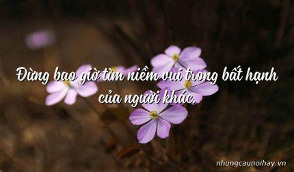 Đừng bao giờ tìm niềm vui trong bất hạnh của người khác.